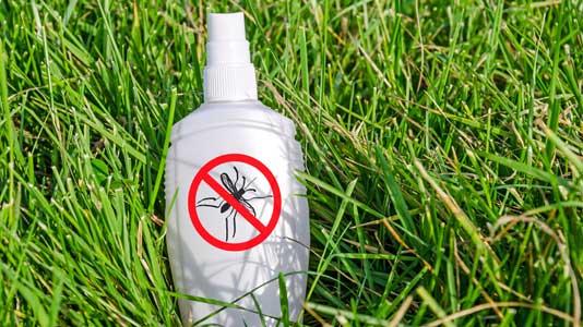 Was Tun Gegen Mücken Im Zimmer : was tun gegen m cken beim campen ~ Whattoseeinmadrid.com Haus und Dekorationen